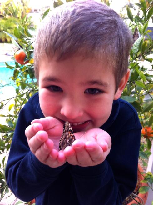 happy-butterfly-face